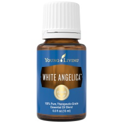 WHITE ANGELICA YOUNG LIVING ESSENTIAL OILS FOR BEAUTY